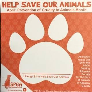 SPCA Serving Allegany County